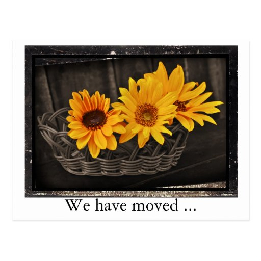 We have moved with sunflowers New address Post Card