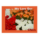 We Love Our CNA's posters Orange Tulip Flowers