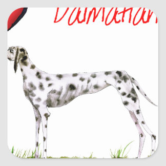 we luv dalmatians from Tony Fernandes Square Sticker