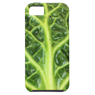 We singing Kohl Savoy cabbage berza chou vert Case For The iPhone 5