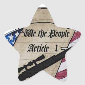 ( We The People ) Article 1 2nd Amendment Guns and Star Sticker