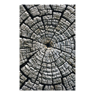 Weathered growth ring stationery paper