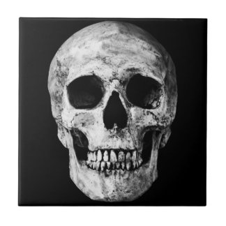 Weathered Old Skull - Black & White Tile