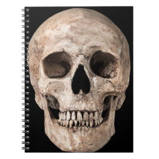 Weathered Old Skull Notebook