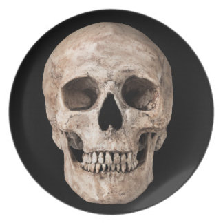 Weathered Old Skull Plate