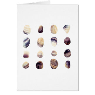 Weathered Seashells Card
