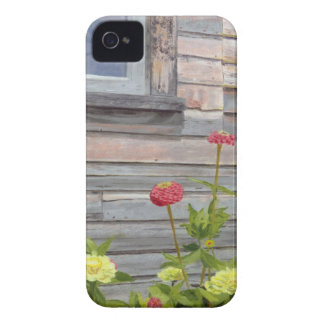 Weathered wood and Zinnias iPhone 4 Case-Mate Cases