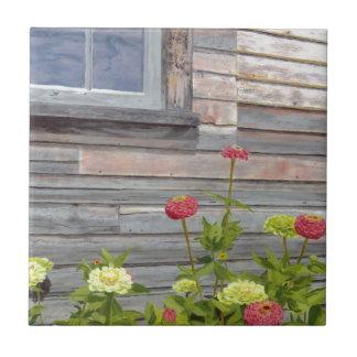 Weathered wood and Zinnias Tile