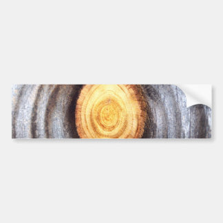 Weathered Wood Knot Bumper Sticker