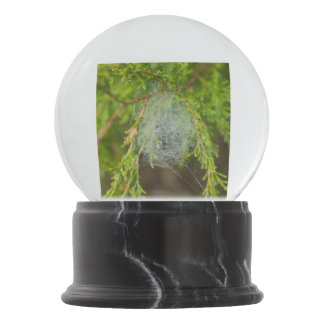Web In Cedar Snow Globe