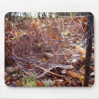Web of European Garden Spider Mouse Mat Mouse Pad