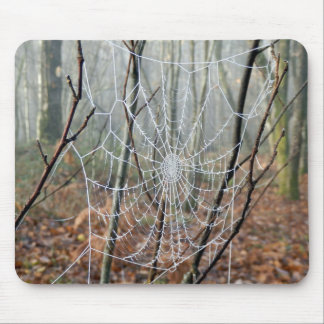 Web of European Garden Spider Mpuse Mat Mouse Pad