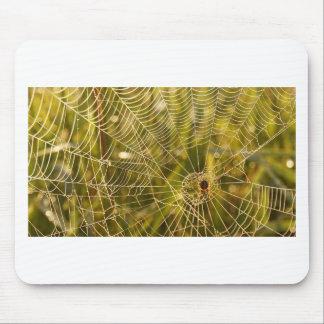 Web of Intrique Mouse Pad