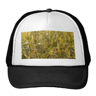 Web of Intrique Trucker Hat