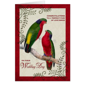 Wedding Congratulations Vintage Lorikeet Parrots Card