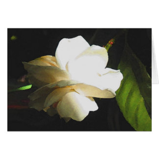 Wedding Fragrant Ivory Gardenia Blossom Card