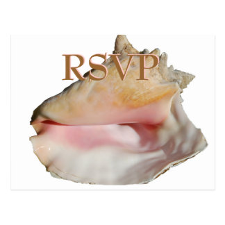 Wedding Guests RSVP Conch Seashell Postcard