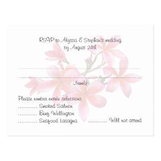 Wedding Reply Menu Postcards Pink Plumeria Floral