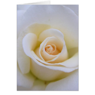 Wedding Rose Card