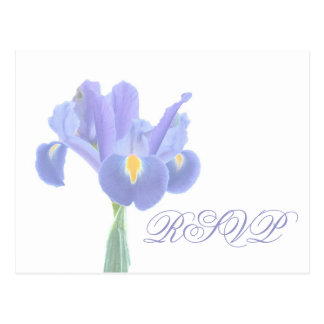 Wedding RSVP Iris Postcards