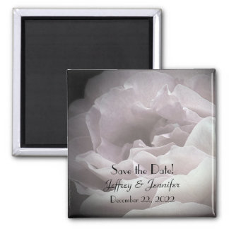 Wedding Save the Date Pale Pink Rose Magnet 2 Inch Square Magnet