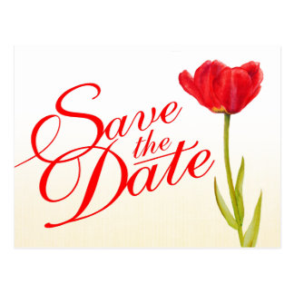 Wedding Save the Date Postcard red tulip art