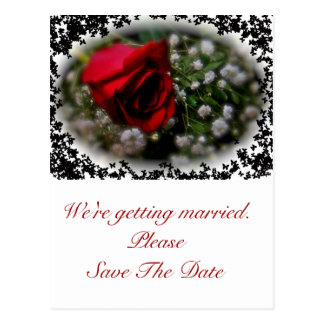 Wedding Save the Date Rose & Baby's Breath Postcard