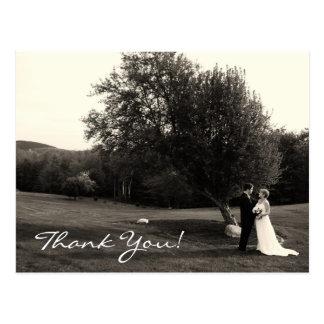 Wedding Thank you Postcards