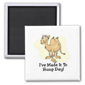 Wednesday Hump Day Square Magnet