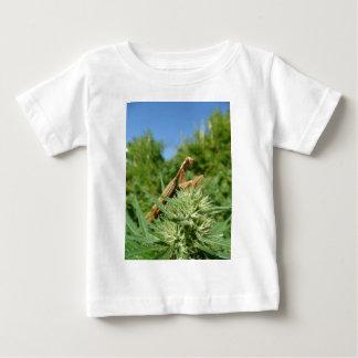 WEED MARIJUANA HEMP POT MANTIDS MANTIS shirts
