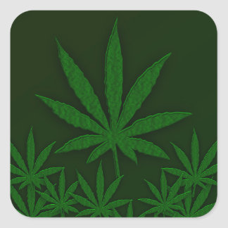 Weed Square Sticker