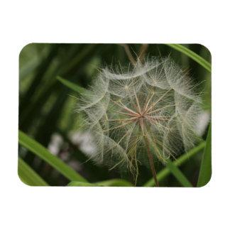 Weeds in my Flower Bed Rectangular Photo Magnet