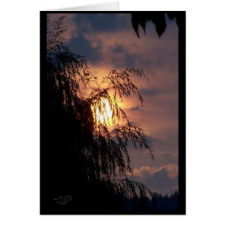 Weeping Willow at Sunrise Card