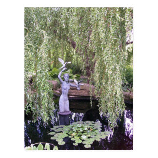 Weeping Willow Postcard