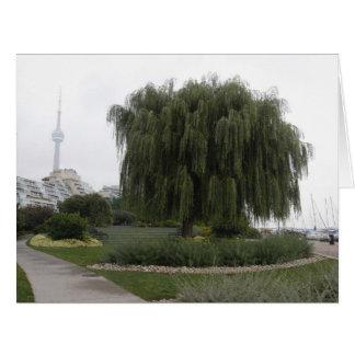 Weeping Willow Toronto BIG Card