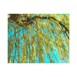 Weeping willow tree photo canvas print