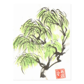 Weeping Willow Tree Postcard