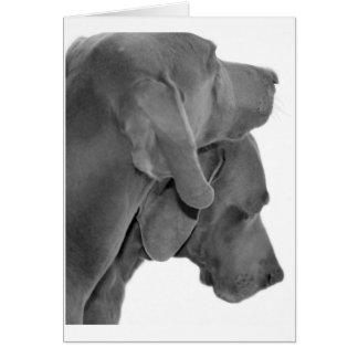 Weim Portrait - Black & White Card