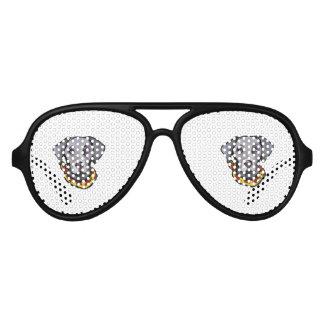 Weimarana Cinco de Mayo Sunglasses