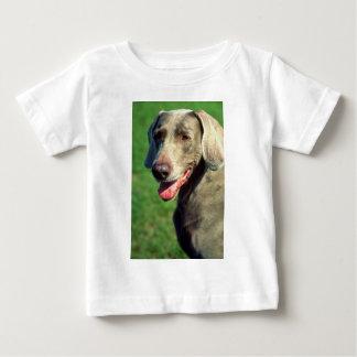 Weimaraner Baby T-Shirt