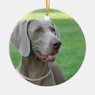 Weimaraner Ceramic Ornament