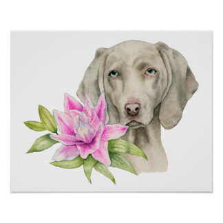 Weimaraner Dog and Lily Watercolor Painting Poster