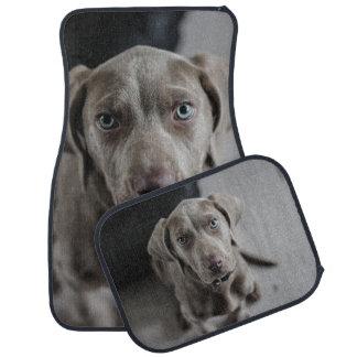 Weimaraner Dog Breed Lover Car Mat