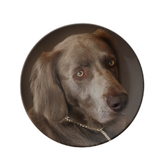 Weimaraner Hunting Dog Plate