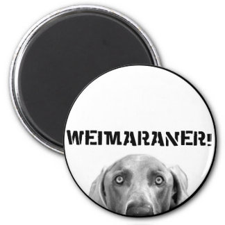 Weimaraner Nation : Weimaraner In A Box! Magnet