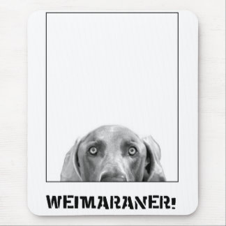 Weimaraner Nation : Weimaraner In A Box! Mouse Pad