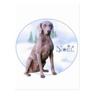 Weimaraner Noel Post Card