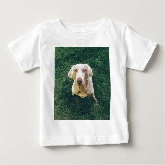 Weimaraner of the Grass Baby T-Shirt