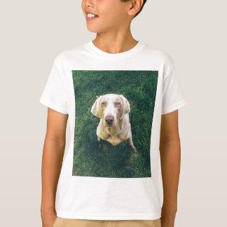 Weimaraner of the Grass T-Shirt