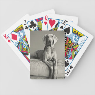 Weimaraner Portrait Bicycle Playing Cards